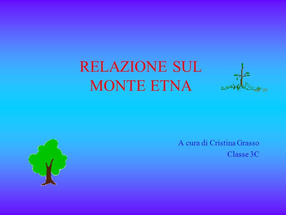 RELAZIONE SUL MONTE ETNA A cura di Cristina Grasso Classe 3C