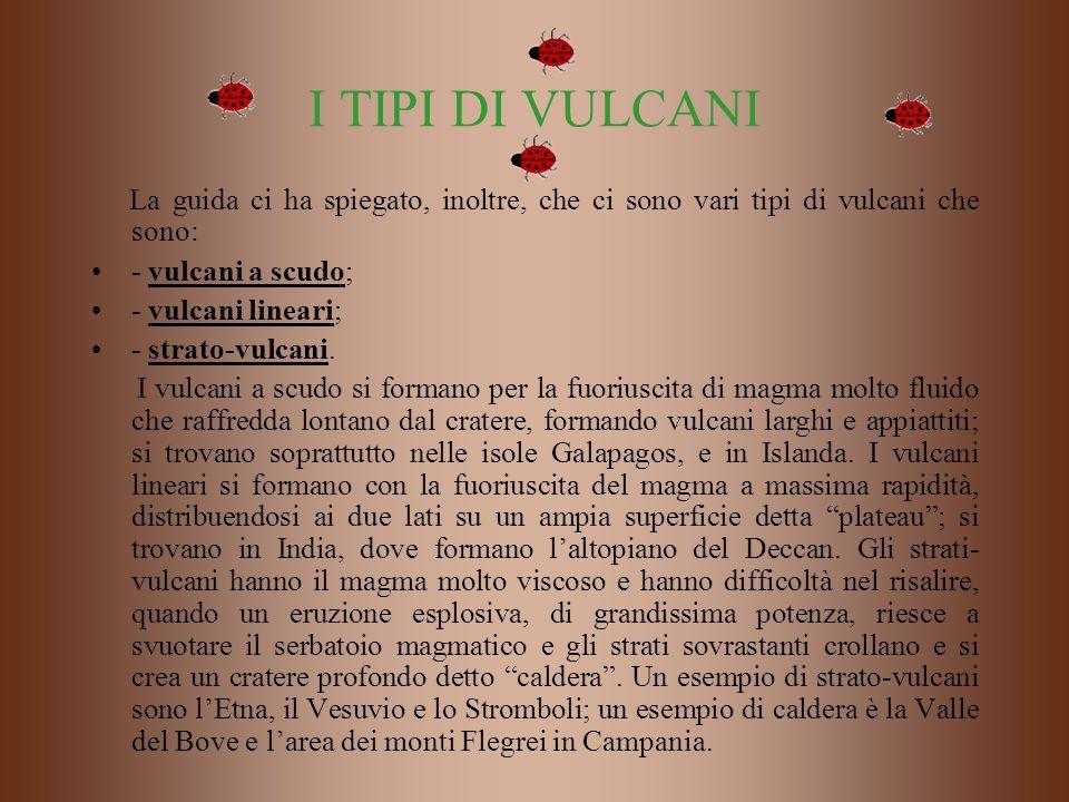 I TIPI DI VULCANI La guida ci ha spiegato, inoltre, che ci sono vari tipi di vulcani che sono: - vulcani a scudo; - vulcani lineari; - strato-vulcani.