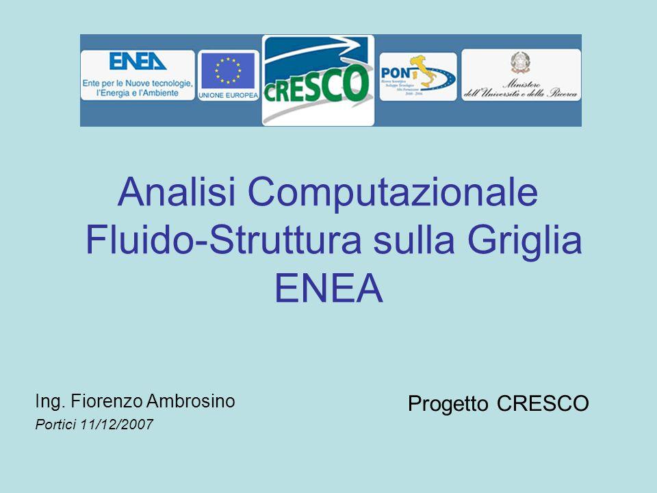 Analisi Computazionale Fluido-Struttura sulla Griglia ENEA Ing. Fiorenzo Ambrosino Portici 11/12/2007 Progetto CRESCO