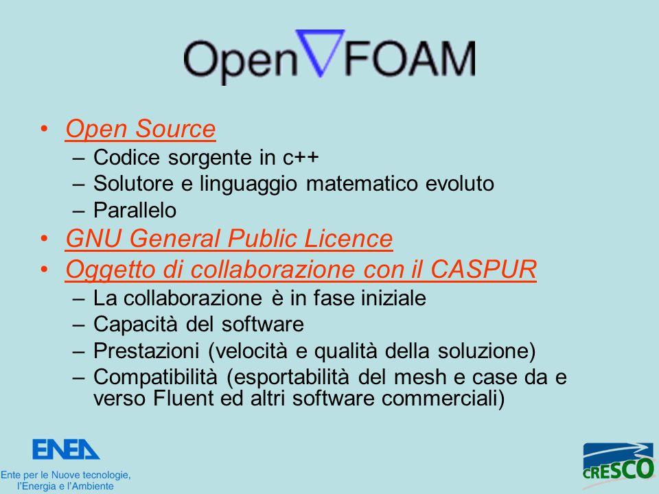 Open Source –Codice sorgente in c++ –Solutore e linguaggio matematico evoluto –Parallelo GNU General Public Licence Oggetto di collaborazione con il C