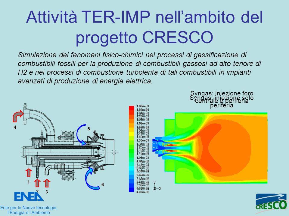 Attività TER-IMP nellambito del progetto CRESCO Simulazione dei fenomeni fisico-chimici nei processi di gassificazione di combustibili fossili per la
