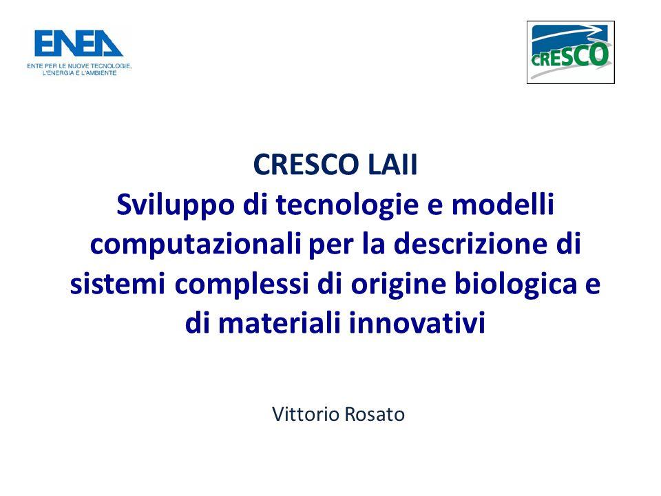 CRESCO LAII Sviluppo di tecnologie e modelli computazionali per la descrizione di sistemi complessi di origine biologica e di materiali innovativi Vittorio Rosato