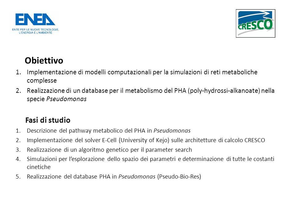 Obiettivo 1.Implementazione di modelli computazionali per la simulazioni di reti metaboliche complesse 2.Realizzazione di un database per il metabolismo del PHA (poly-hydrossi-alkanoate) nella specie Pseudomonas Fasi di studio 1.Descrizione del pathway metabolico del PHA in Pseudomonas 2.Implementazione del solver E-Cell (University of Kejo) sulle architetture di calcolo CRESCO 3.Realizzazione di un algoritmo genetico per il parameter search 4.Simulazioni per lesplorazione dello spazio dei parametri e determinazione di tutte le costanti cinetiche 5.Realizzazione del database PHA in Pseudomonas (Pseudo-Bio-Res)