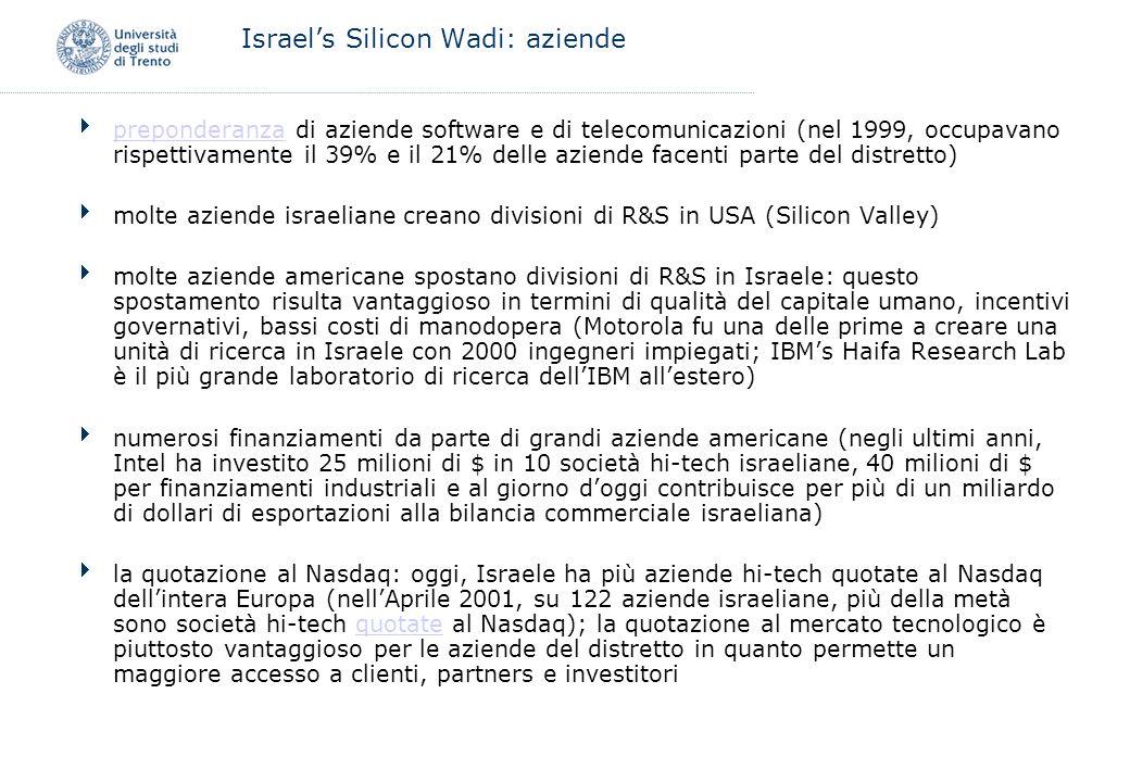 Israels Silicon Wadi: aziende preponderanza di aziende software e di telecomunicazioni (nel 1999, occupavano rispettivamente il 39% e il 21% delle azi