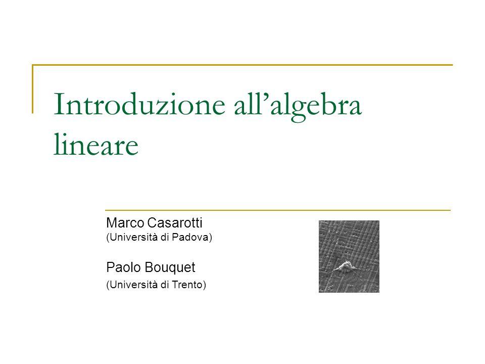 Introduzione allalgebra lineare Marco Casarotti (Università di Padova) Paolo Bouquet (Università di Trento)