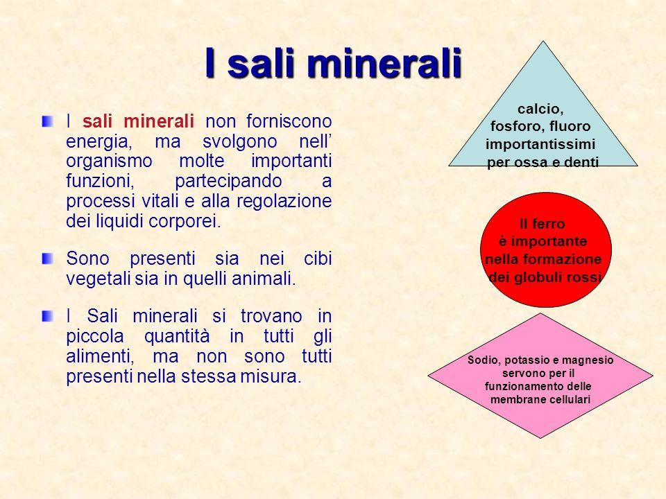 I sali minerali I sali minerali non forniscono energia, ma svolgono nell organismo molte importanti funzioni, partecipando a processi vitali e alla re