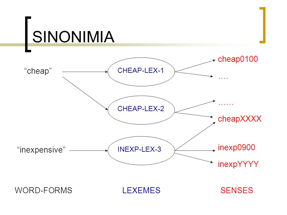 SINONIMIA cheap WORD-FORMSLEXEMESSENSES CHEAP-LEX-1CHEAP-LEX-2INEXP-LEX-3 cheap0100 …. …… cheapXXXX inexp0900 inexpYYYY inexpensive