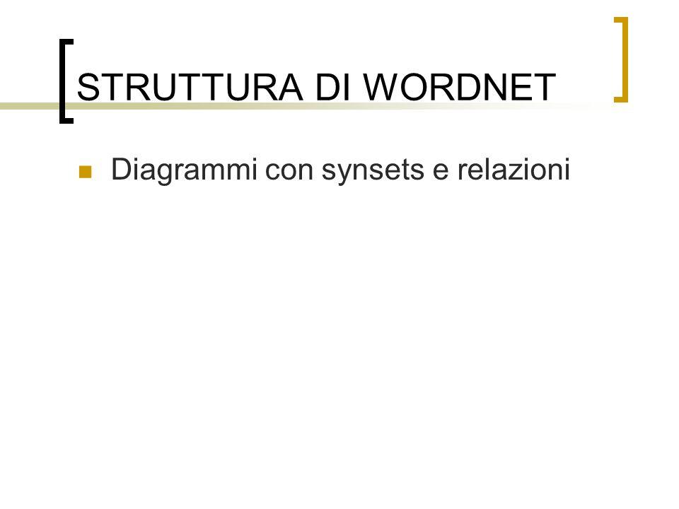 STRUTTURA DI WORDNET Diagrammi con synsets e relazioni