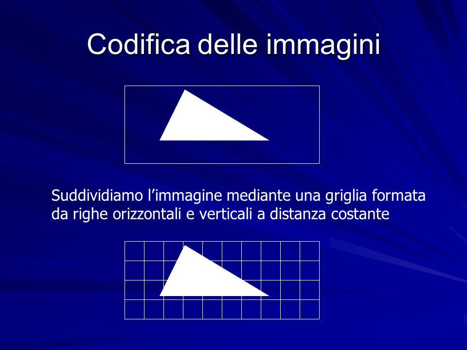 Codifica delle immagini Suddividiamo limmagine mediante una griglia formata da righe orizzontali e verticali a distanza costante