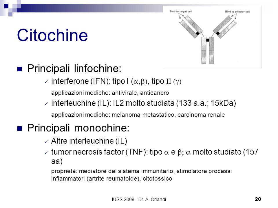 IUSS 2008 - Dr. A. Orlandi20 Citochine Principali linfochine: interferone (IFN): tipo I ( tipo applicazioni mediche: antivirale, anticancro interleuch