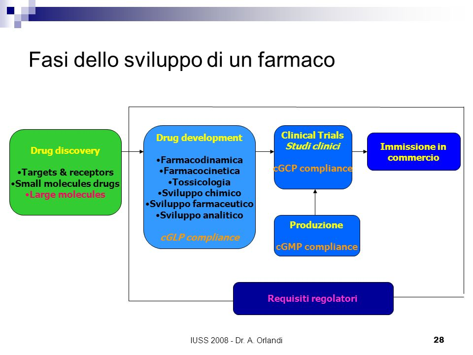 IUSS 2008 - Dr. A. Orlandi28 Fasi dello sviluppo di un farmaco Drug discovery Targets & receptors Small molecules drugs Large molecules Drug developme