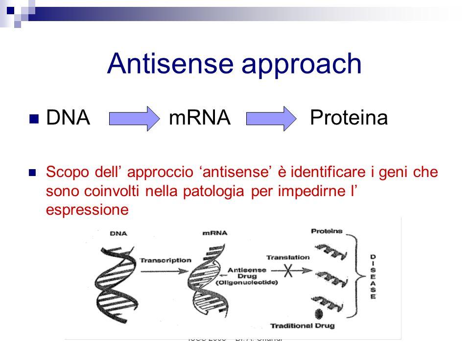IUSS 2008 - Dr. A. Orlandi Antisense approach DNAmRNAProteina Scopo dell approccio antisense è identificare i geni che sono coinvolti nella patologia