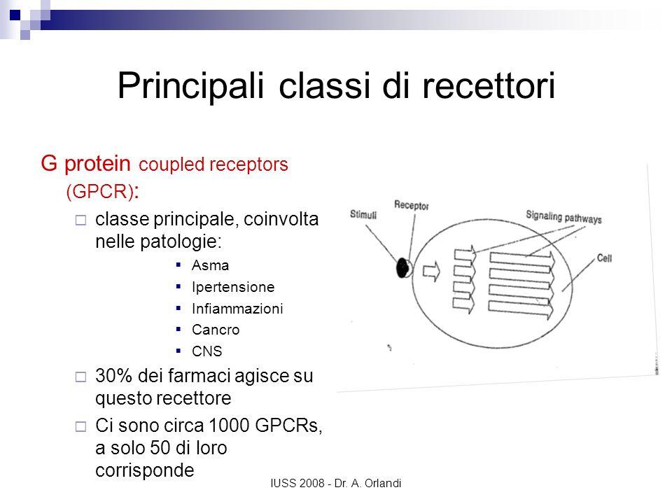 IUSS 2008 - Dr. A. Orlandi Principali classi di recettori G protein coupled receptors (GPCR) : classe principale, coinvolta nelle patologie: Asma Iper