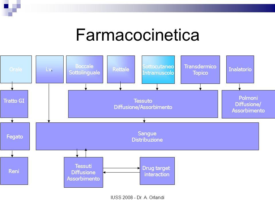 IUSS 2008 - Dr. A. Orlandi Farmacocinetica Oralei.v. Boccale Sottolinguale Rettale Sottocutaneo Intramuscolo Transdermico Topico Inalatorio Tratto GI