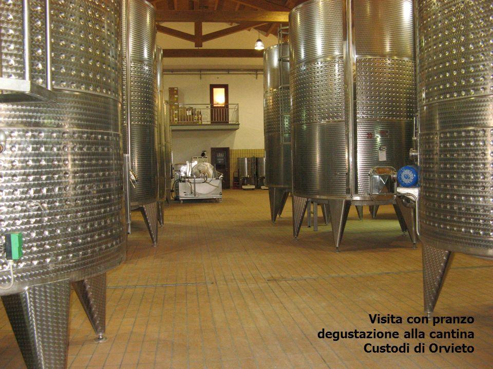 Visita con pranzo degustazione alla cantina Custodi di Orvieto