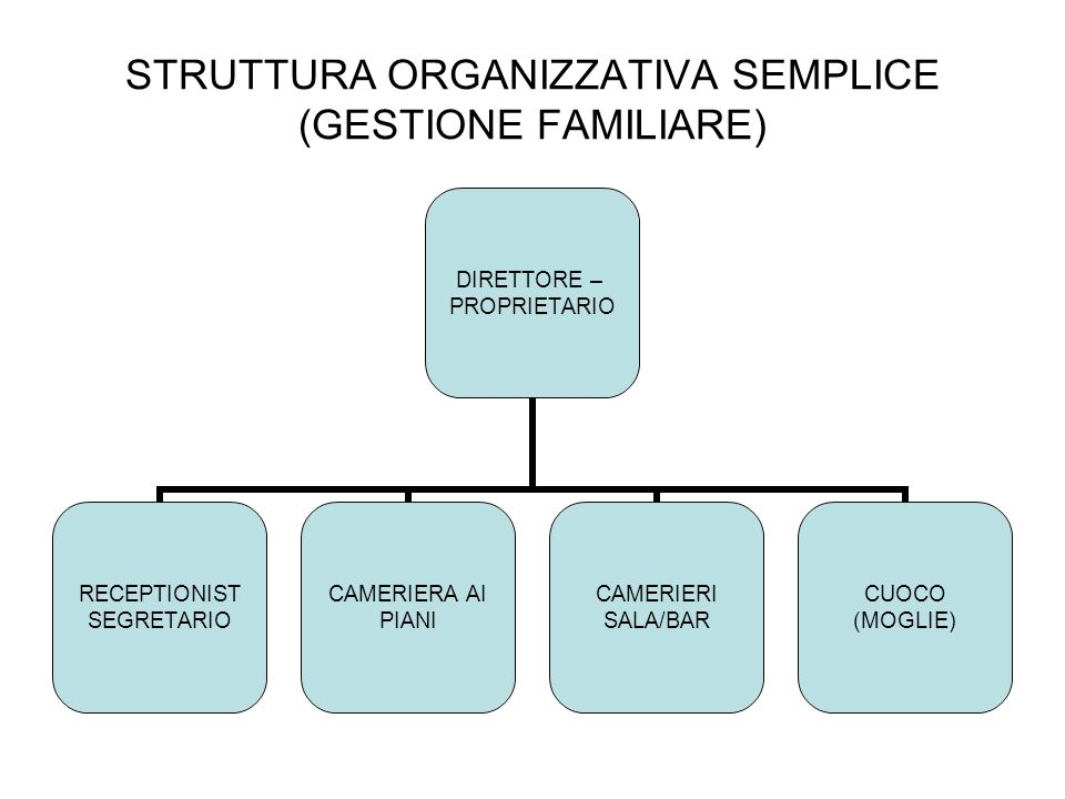 STRUTTURA ORGANIZZATIVA SEMPLICE (GESTIONE FAMILIARE) DIRETTORE – PROPRIETARIO RECEPTIONIST SEGRETARIO CAMERIERA AI PIANI CAMERIERI SALA/BAR CUOCO (MO