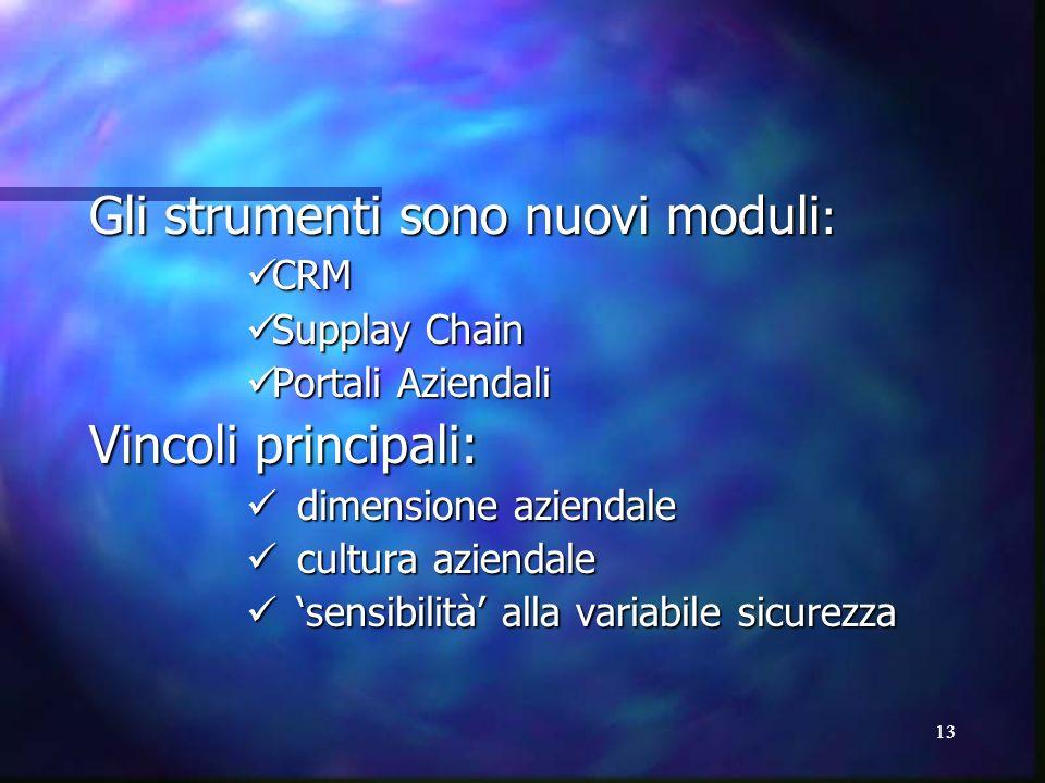 13 Gli strumenti sono nuovi moduli : CRM CRM Supplay Chain Supplay Chain Portali Aziendali Portali Aziendali Vincoli principali: dimensione aziendale