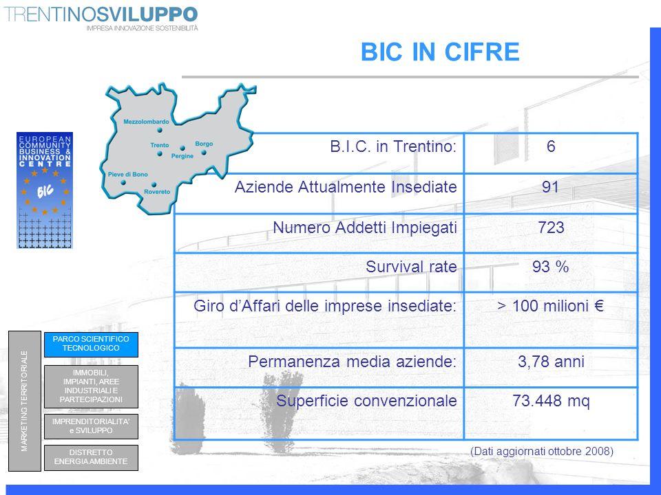 BIC IN CIFRE (Dati aggiornati ottobre 2008) B.I.C. in Trentino:6 Aziende Attualmente Insediate91 Numero Addetti Impiegati723 Survival rate93 % Giro dA
