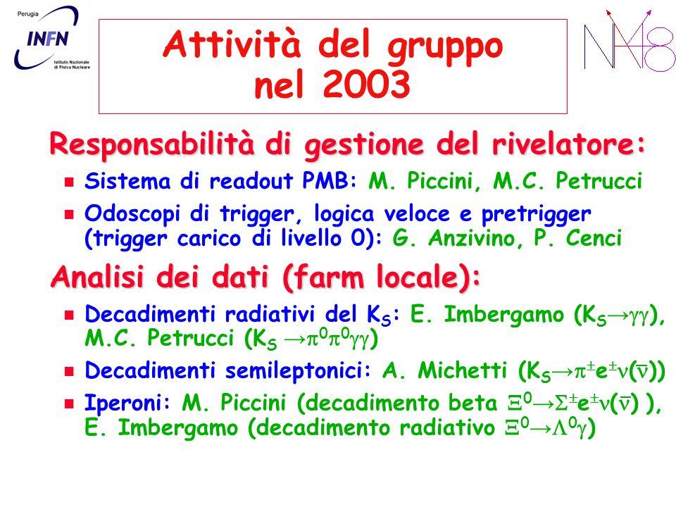 Attività del gruppo nel 2003 Responsabilità di gestione del rivelatore: Sistema di readout PMB: M. Piccini, M.C. Petrucci Odoscopi di trigger, logica