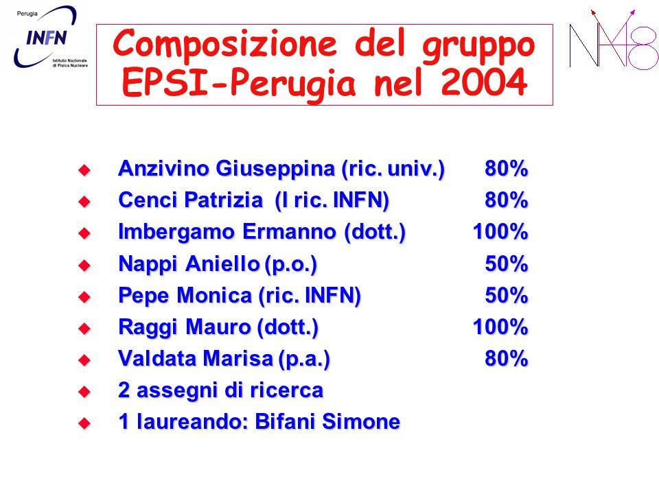 Composizione del gruppo EPSI-Perugia nel 2004 Anzivino Giuseppina (ric. univ.) 80% Anzivino Giuseppina (ric. univ.) 80% Cenci Patrizia (I ric. INFN) 8