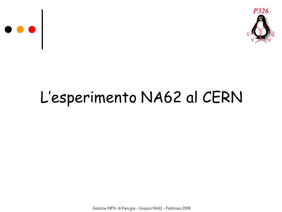 Sezione INFN di Perugia - Gruppo NA62 - Febbraio 2008 Lesperimento NA62 al CERN