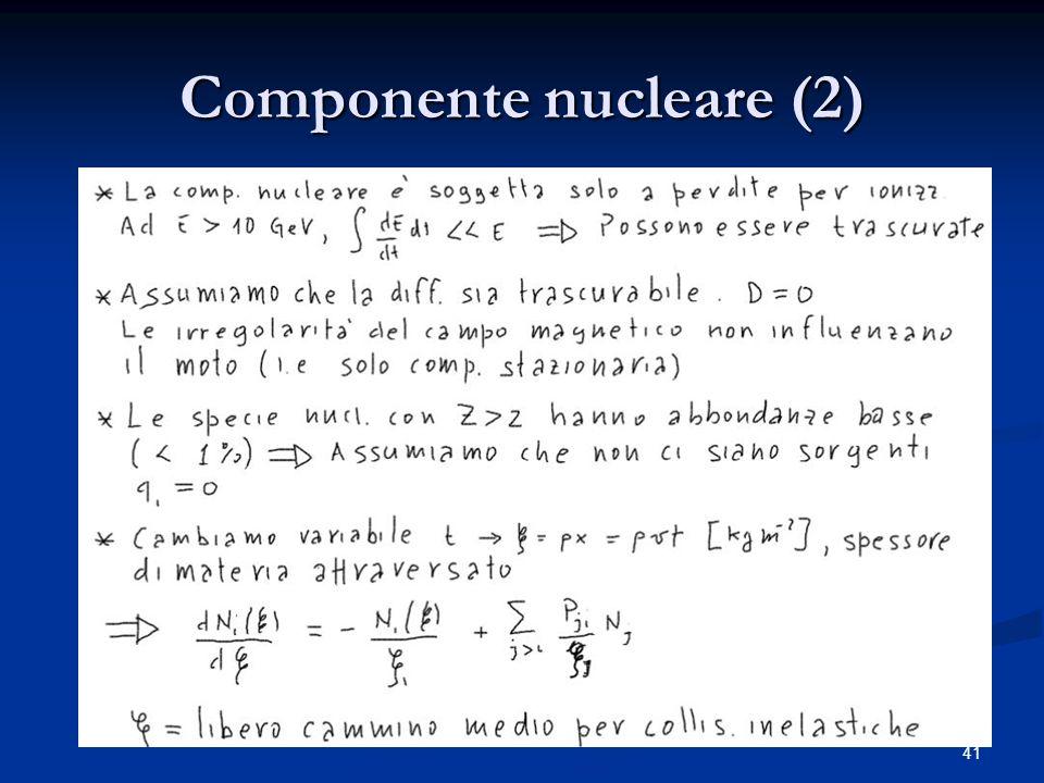41 Componente nucleare (2)