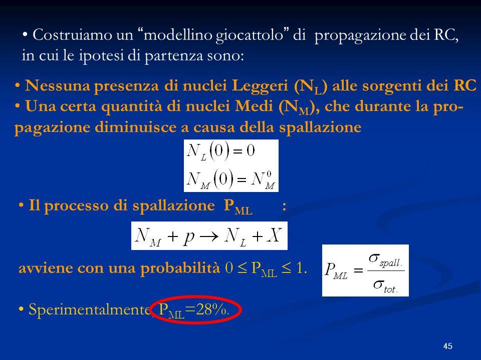 45 Costruiamo un modellino giocattolo di propagazione dei RC, in cui le ipotesi di partenza sono: Nessuna presenza di nuclei Leggeri (N L ) alle sorge