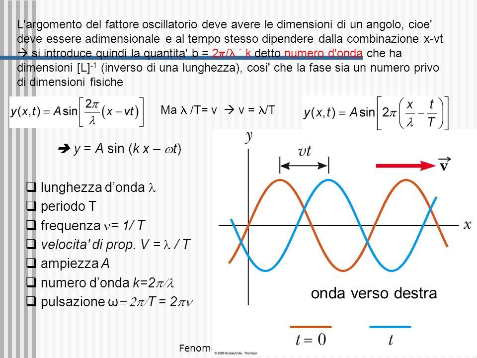 Fenomeni ondulatori 10 Meccanismo di propagazione delle onde meccaniche La propagazione delle onde dipende da una proprieta inerziale del mezzo, cioe capacita di immagazzinare energia cinetica e da una sua proprieta elastica, cioe capacita di immagazzinare energia potenziale elastica La relazione = v (1) fissa la relazione fra lunghezza d onda e periodo: la sorgente fissa per esempio la frequenza (p es quanto rapidamente agito la mano nell acqua); le proprieta fisiche fissano la velocita di propagazione v, la relazione (1) fissa Il periodo dell onda (cioe la frequenza) e lo stesso della sorgente, esso non cambia durante il moto (ie se v diminuisce, lambda aumenta e viceversa)