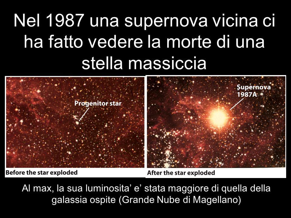Nel 1987 una supernova vicina ci ha fatto vedere la morte di una stella massiccia Al max, la sua luminosita e stata maggiore di quella della galassia