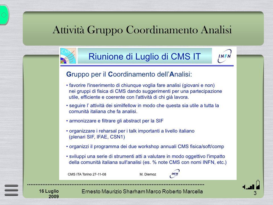 Attività Gruppo Coordinamento Analisi Ernesto Maurizio Sharham Marco Roberto Marcella 3 16 Luglio 2009
