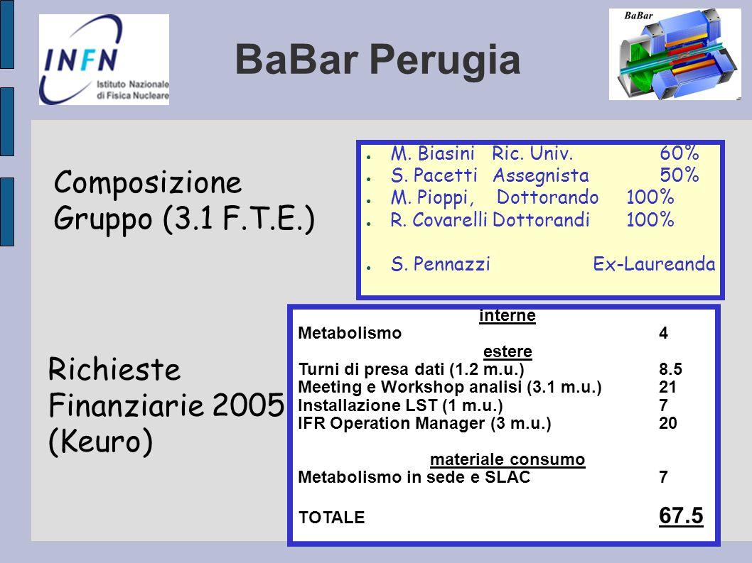 BaBar Perugia Composizione Gruppo (3.1 F.T.E.) M. Biasini Ric. Univ.60% S. PacettiAssegnista 50% M. Pioppi, Dottorando 100% R. CovarelliDottorandi100%