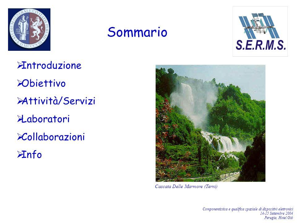 Componentistica e qualifica spaziale di dispositivi elettronici 14-15 Settembre 2004 Perugia, Hotel Giò Il Laboratorio per lo Studio degli Effetti delle Radiazioni sui Materiali per lo Spazio (S.E.R.M.S.) è uno dei laboratori integrati realizzati presso il Polo Scientifico e Didattico di Terni dell Università di Perugia.