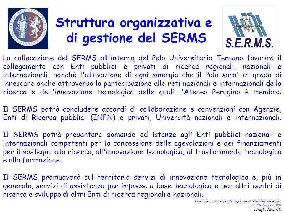 Componentistica e qualifica spaziale di dispositivi elettronici 14-15 Settembre 2004 Perugia, Hotel Giò Struttura organizzativa e di gestione del SERM