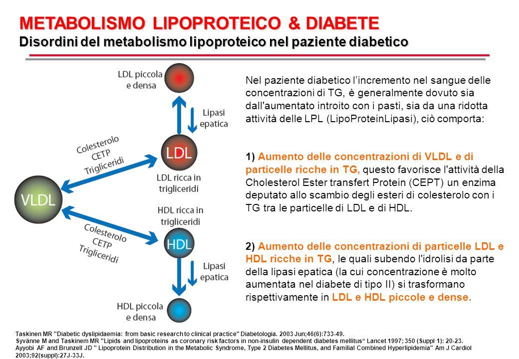 Nel paziente diabetico lincremento nel sangue delle concentrazioni di TG, è generalmente dovuto sia dall aumentato introito con i pasti, sia da una ridotta attività delle LPL (LipoProteinLipasi), ciò comporta: 1) Aumento delle concentrazioni di VLDL e di particelle ricche in TG, questo favorisce l attività della Cholesterol Ester transfert Protein (CEPT) un enzima deputato allo scambio degli esteri di colesterolo con i TG tra le particelle di LDL e di HDL.