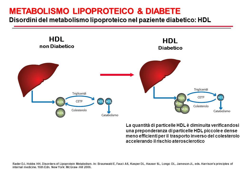 METABOLISMO LIPOPROTEICO & DIABETE Disordini del metabolismo lipoproteico nel paziente diabetico: HDL-2 e HDL-3 La quantità di particelle HDL è diminuita verificandosi una preponderanza di particelle HDL piccole e dense meno efficienti per il trasporto inverso del colesterolo accelerando il rischio aterosclerotico HDL-2 Le particelle HDL-2 diventano più piccole e si riducono numericamente HDL-3 Le particelle HDL-3 risultano disfunzionali a causa di anormalità nella struttura e composizione non Diabetico Diabetico Berthezène F Diabetic dyslipidaemia Br J Diabet Vasc Dis 2002; 2 (Suppl): s12-s17.