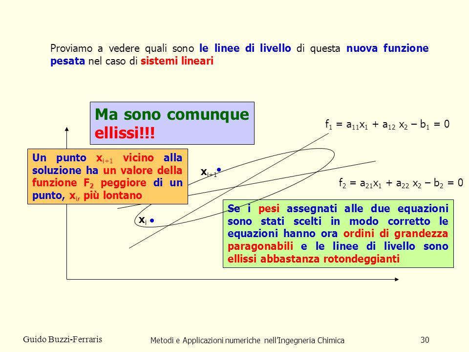 Metodi e Applicazioni numeriche nellIngegneria Chimica 30 Guido Buzzi-Ferraris f 1 = a 11 x 1 + a 12 x 2 – b 1 = 0 f 2 = a 21 x 1 + a 22 x 2 – b 2 = 0