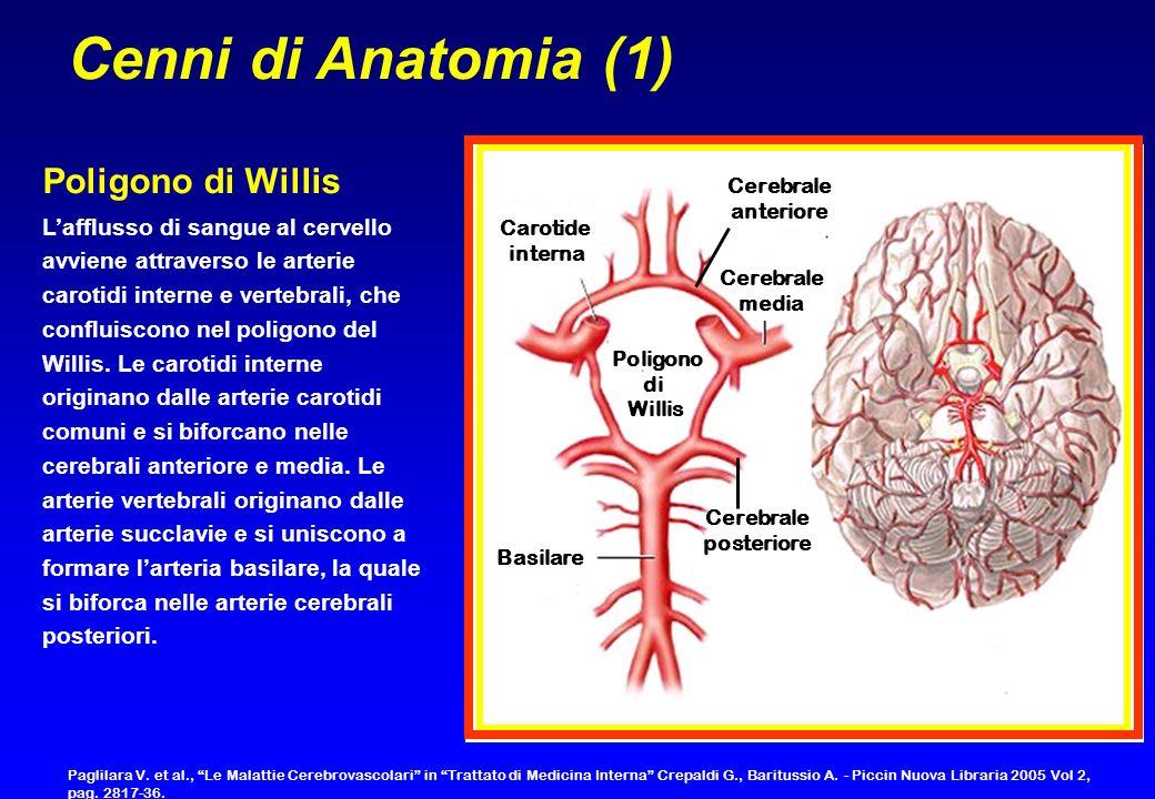 Carotide interna Poligono di Willis Basilare Cerebrale posteriore Cerebrale anteriore Cerebrale media Cenni di Anatomia (1) Lafflusso di sangue al cer
