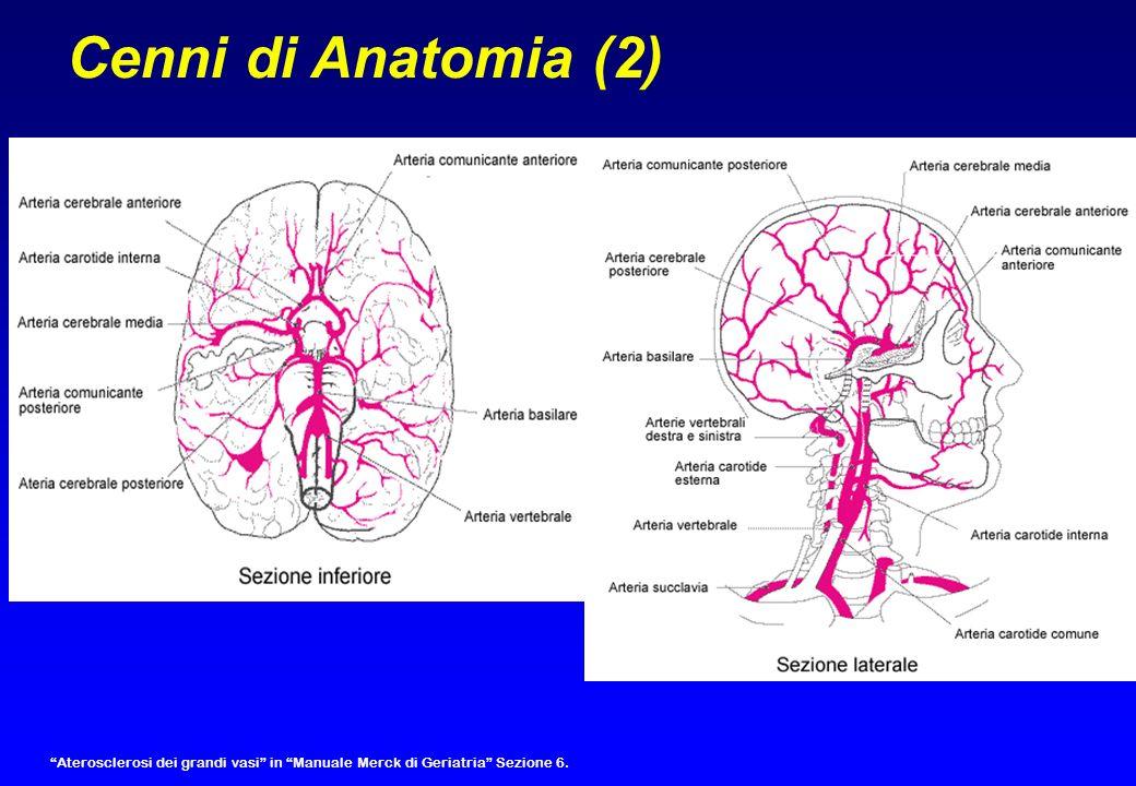 Celebrale anteriore Celebrale media Celebrale posteriore Cenni di Fisiologia (1) Territori vascolarizzati dalle arterie cerebrali Flusso ematico cerebrale: 50ml/100mg/min (1 L /min) Pressione di perfusione: PAM – P liquor FEC = pressione perfusione cerebrale/ resistenze vascolari regionali Autoregolazione che mantiene costante il circolo ( >Co2 = vasodilatazione); Quando il flusso diminuisce, meccanismi di compensazione (aumentata estrazione di ossigeno e glucosio dai capillari) fino ad un flusso di 20ml/100mg/min).