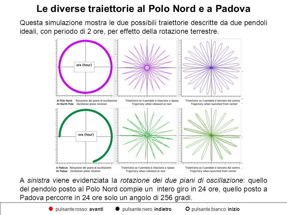 Le diverse traiettorie al Polo Nord e a Padova Questa simulazione mostra le due possibili traiettorie descritte da due pendoli ideali, con periodo di