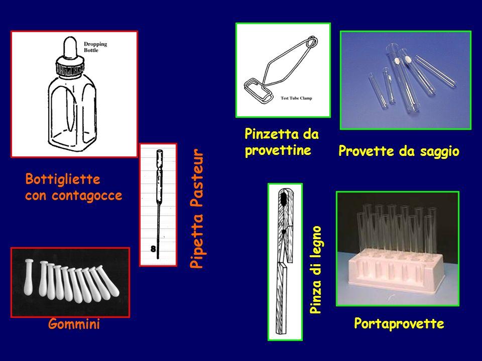 Gommini Pipetta Pasteur Portaprovette Provette da saggio Pinzetta da provettine Pinza di legno Bottigliette con contagocce