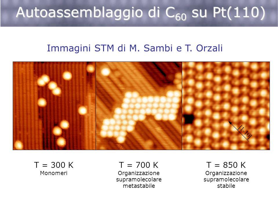 Autoassemblaggio di C 60 su Pt(110) T = 300 K Monomeri T = 700 K Organizzazione supramolecolare metastabile T = 850 K Organizzazione supramolecolare s