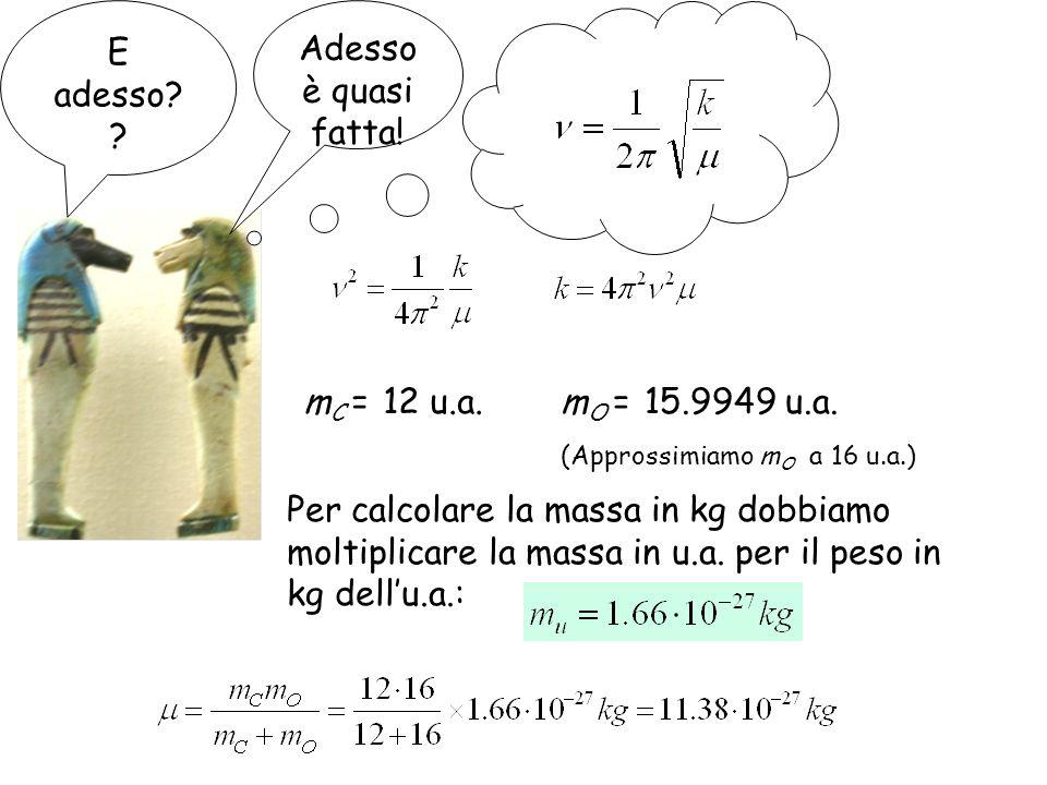 E adesso? ? Adesso è quasi fatta! m C = 12 u.a.m O = 15.9949 u.a. (Approssimiamo m O a 16 u.a.) Per calcolare la massa in kg dobbiamo moltiplicare la