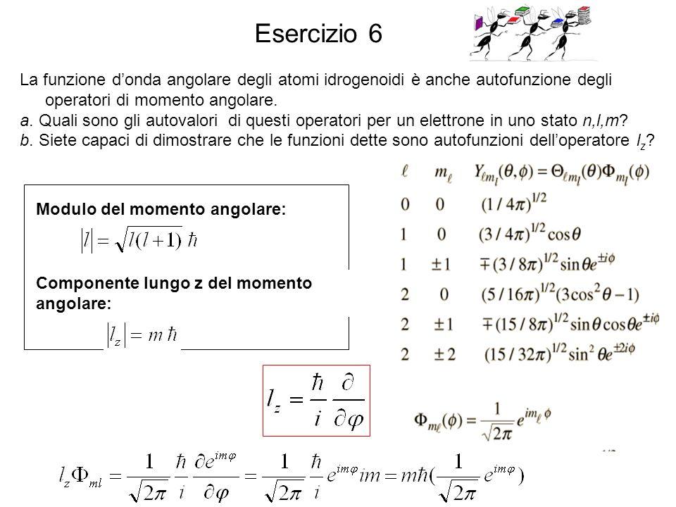 La funzione donda angolare degli atomi idrogenoidi è anche autofunzione degli operatori di momento angolare. a. Quali sono gli autovalori di questi op
