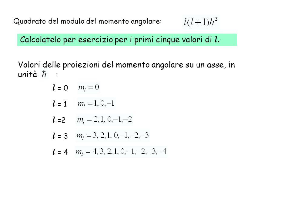 Calcolatelo per esercizio per i primi cinque valori di l. Quadrato del modulo del momento angolare: l = 0 l = 1 l =2 l = 3 l = 4 Valori delle proiezio