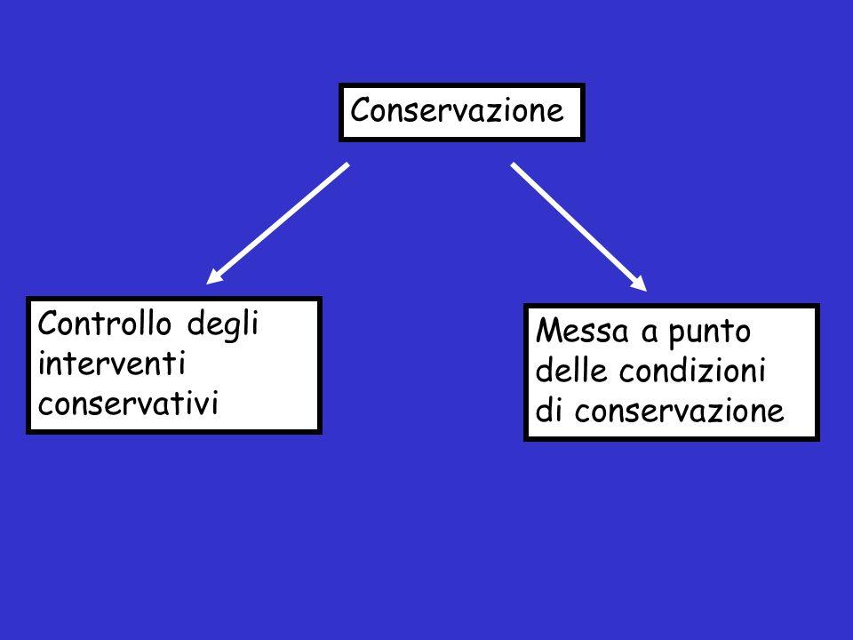 Conservazione Controllo degli interventi conservativi Messa a punto delle condizioni di conservazione