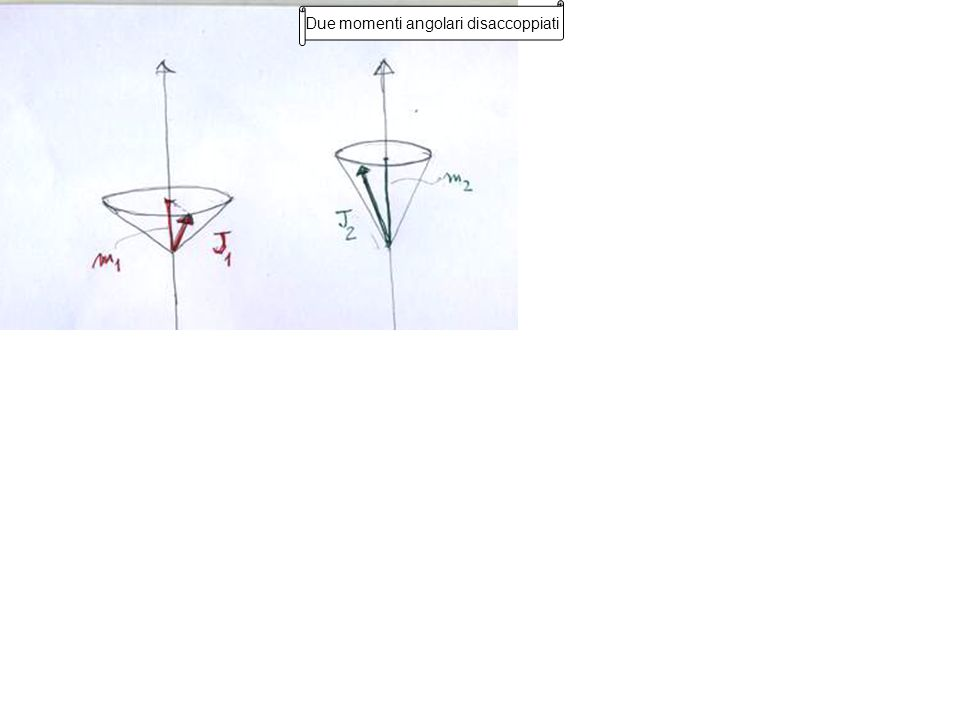 La somma delle loro proiezioni sullasse z è sempre definita Due momenti angolari accoppiati I due momenti sono disaccoppiati, cioè ciascuno può essere sul suo cono di precessione in qualunque posizione indipendentemente dallaltro.