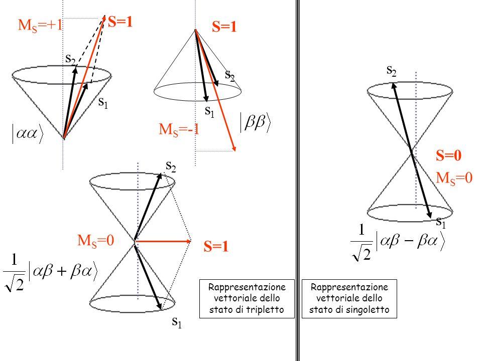 s1s1 s2s2 S=1 M S =+1 M S =-1 S=1 s1s1 s2s2 s2s2 s1s1 M S =0 Rappresentazione vettoriale dello stato di tripletto M S =0 s2s2 s1s1 S=0 Rappresentazione vettoriale dello stato di singoletto