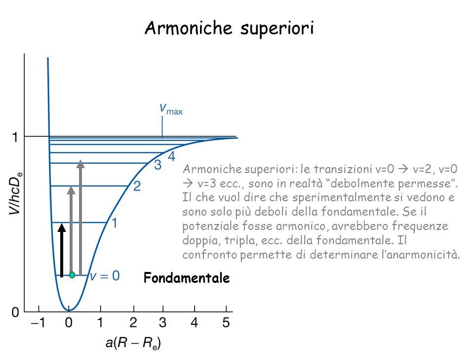 Armoniche superiori Fondamentale Armoniche superiori: le transizioni v=0 v=2, v=0 v=3 ecc., sono in realtà debolmente permesse. Il che vuol dire che s
