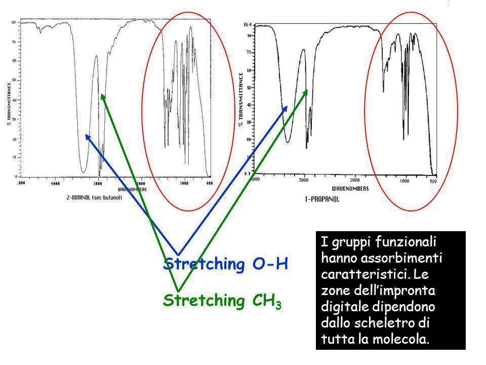 Stretching O-H Stretching CH 3 I gruppi funzionali hanno assorbimenti caratteristici. Le zone dellimpronta digitale dipendono dallo scheletro di tutta