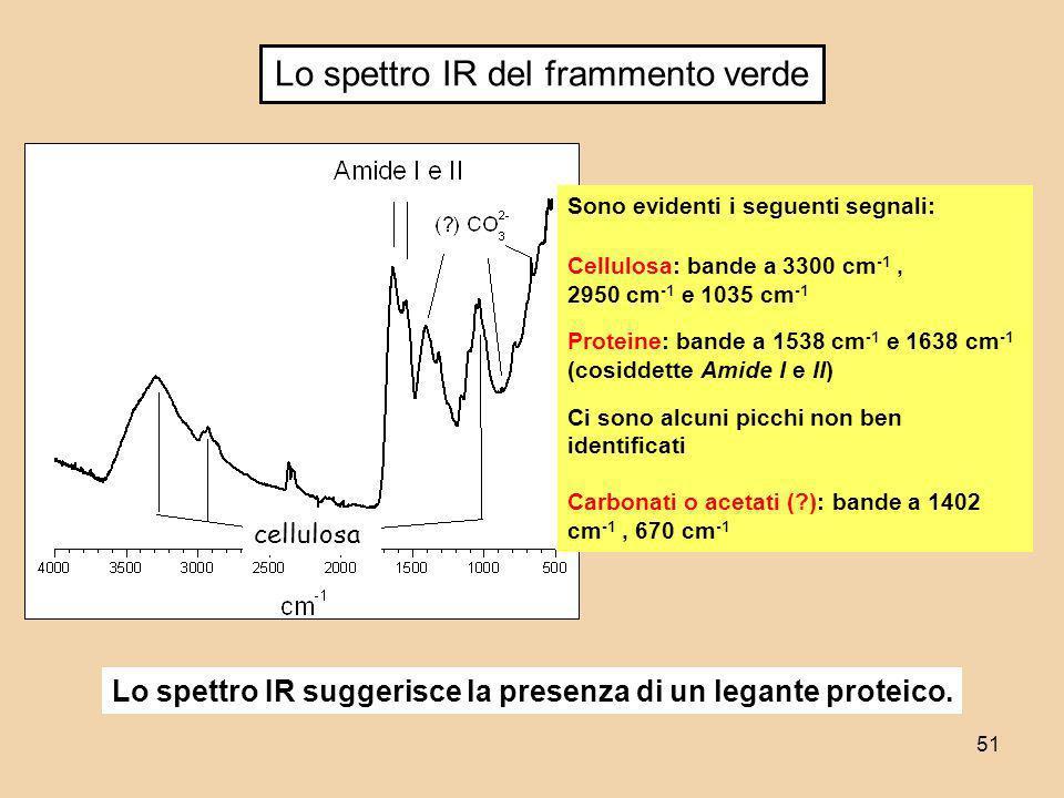 51 Lo spettro IR del frammento verde Sono evidenti i seguenti segnali: Cellulosa: bande a 3300 cm -1, 2950 cm -1 e 1035 cm -1 Proteine: bande a 1538 c